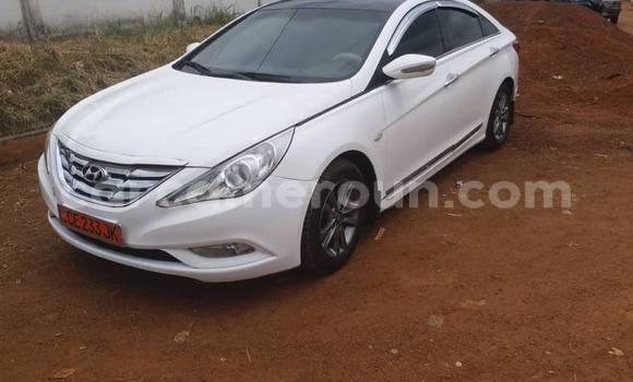 Acheter Occasions Voiture Hyundai Sonata Blanc à Yaoundé au Central Cameroon