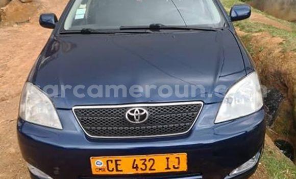 Acheter Occasions Voiture Toyota Corolla Bleu à Yaoundé au Central Cameroon
