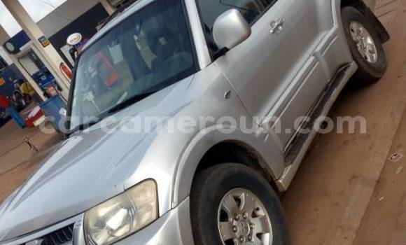 Acheter Occasions Voiture Mitsubishi Montero Gris à Yaoundé au Central Cameroon
