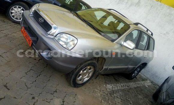 Acheter Occasions Voiture Hyundai Santa Fe Gris à Douala, Littoral Cameroon