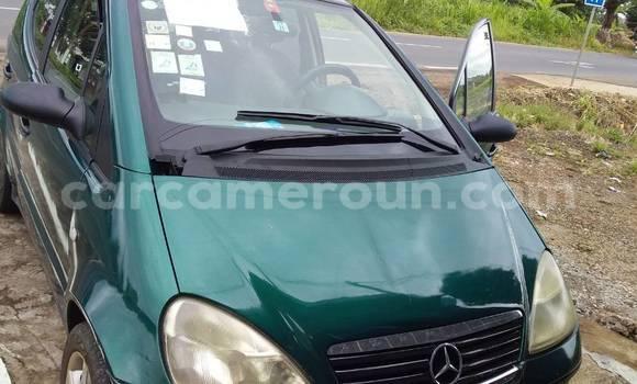 Acheter Occasion Voiture Mercedes Viano Vert à Douala, Littoral Cameroon