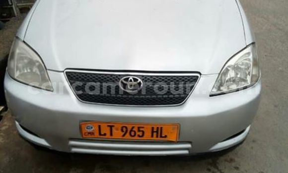 Acheter Occasion Voiture Toyota Corolla Gris à Douala, Littoral Cameroon