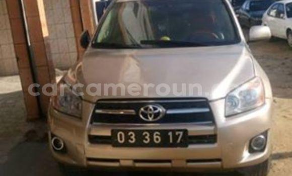 Acheter Occasions Voiture Toyota RAV4 Beige à Yaoundé, Central Cameroon