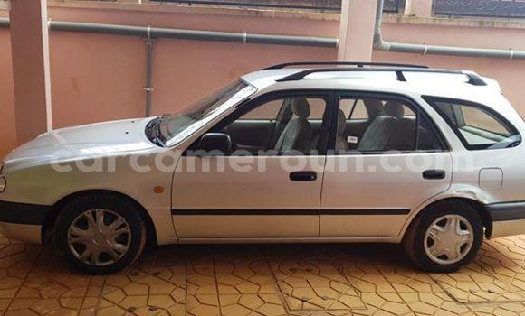 Acheter Occasions Voiture Toyota Corolla Gris à Yaoundé, Central Cameroon