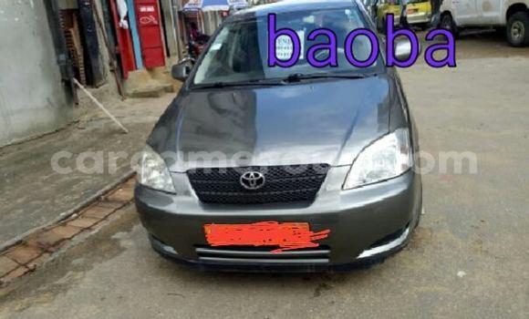Acheter Occasions Voiture Toyota Corolla Autre à Yaoundé, Central Cameroon