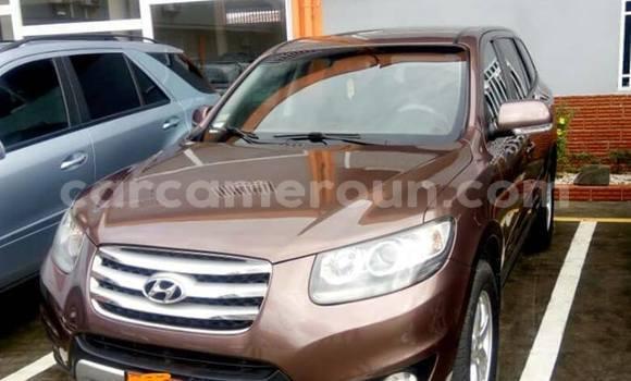 Acheter Occasion Voiture Hyundai Santa Fe Marron à Douala, Littoral Cameroon