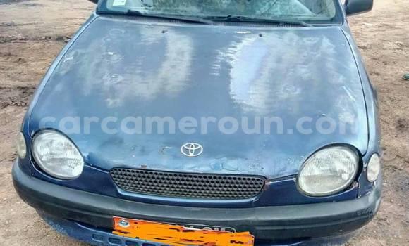 Acheter Occasions Voiture Toyota Corolla Bleu à Douala, Littoral Cameroon