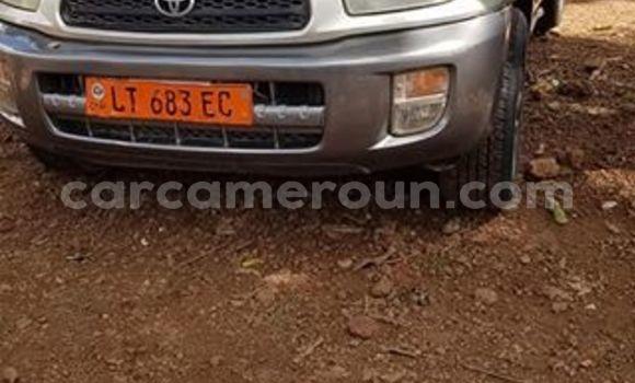 Acheter Occasion Voiture Toyota RAV4 Gris à Bafoussam, West Cameroon