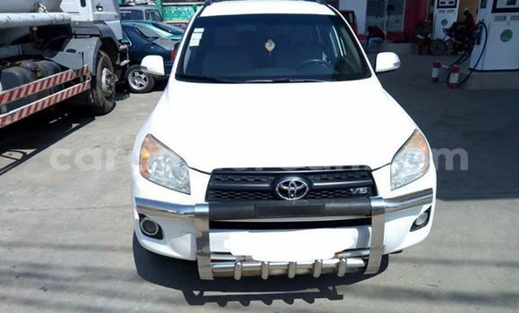 Acheter Occasion Voiture Toyota RAV4 Blanc à Douala, Littoral Cameroon