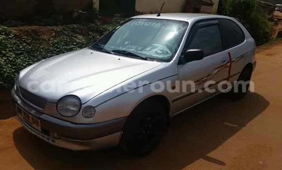 Acheter Occasion Voiture Toyota Corolla Gris à Limbe, Southwest Cameroon