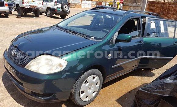 Acheter Occasion Voiture Toyota Corolla Vert à Yaoundé, Central Cameroon