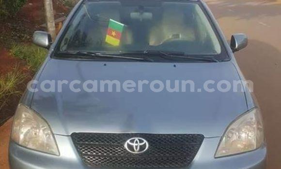 Acheter Importé Voiture Toyota Allex Autre à Yaoundé, Central Cameroon