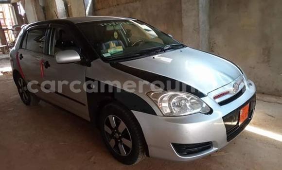 Acheter Occasion Voiture Toyota Allex Gris à Yaoundé, Central Cameroon