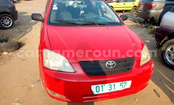 Acheter Occasion Voiture Toyota Corolla Rouge à Douala, Littoral Cameroon