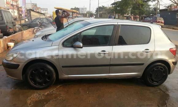 Acheter Occasion Voiture Peugeot 307 Gris à Douala, Littoral Cameroon