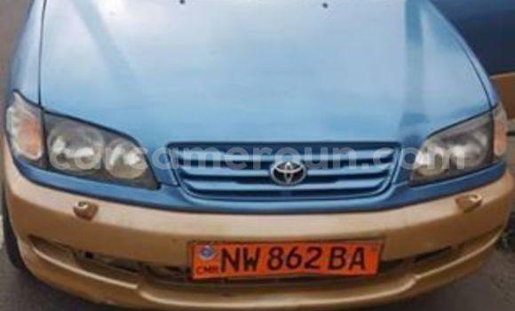 Acheter Occasion Voiture Toyota Picnic Bleu à Douala, Littoral Cameroon