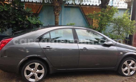 Acheter Importé Voiture Nissan Primera Gris à Douala, Littoral Cameroon