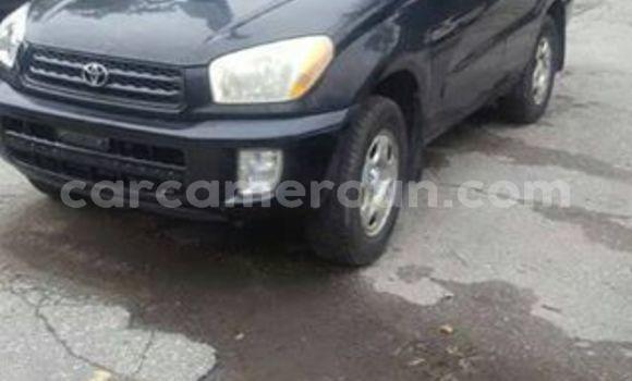 Acheter Occasion Voiture Toyota RAV4 Noir à Douala, Littoral Cameroon