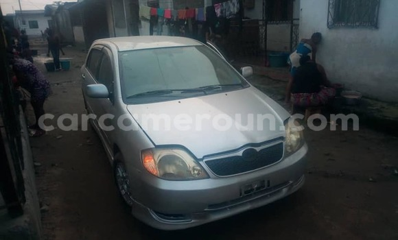 Acheter Occasion Voiture Toyota Allex Gris à Douala, Littoral Cameroon