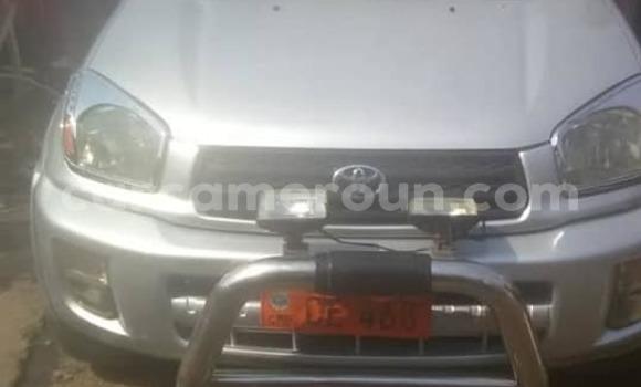 Acheter Occasion Voiture Toyota RAV4 Gris à Douala, Littoral Cameroon