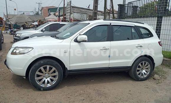 Acheter Occasion Voiture Hyundai Santa Fe Blanc à Douala, Littoral Cameroon