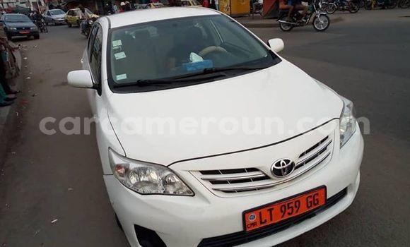 Acheter Occasion Voiture Toyota Corolla Blanc à Douala, Littoral Cameroon