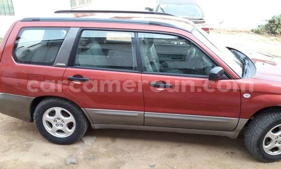 Acheter Occasion Voiture Subaru WRX STi Rouge à Douala, Littoral Cameroon