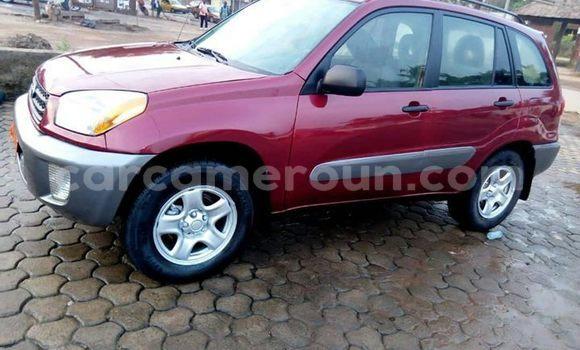 Acheter Occasion Voiture Toyota RAV4 Rouge à Douala, Littoral Cameroon