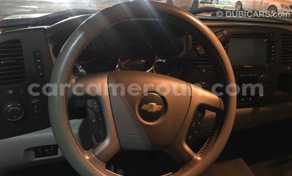 Acheter Importé Voiture Chevrolet Silverado Autre à Import - Dubai, Adamawa