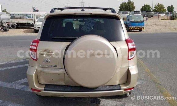 Acheter Importé Voiture Toyota RAV4 Autre à Import - Dubai, Adamawa