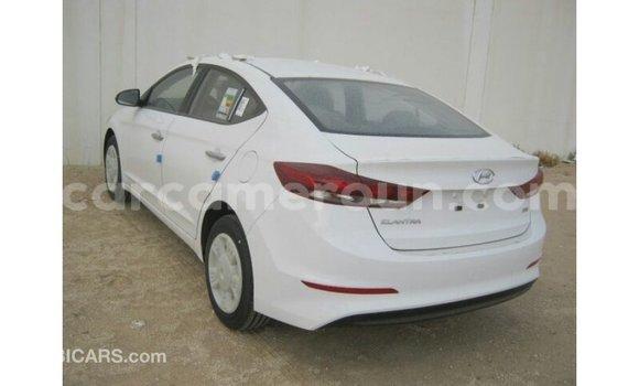 Acheter Importé Voiture Hyundai Elantra Blanc à Import - Dubai, Adamawa