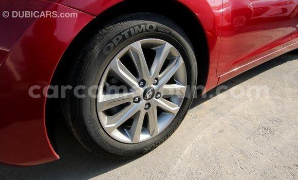 Acheter Importé Voiture Hyundai Elantra Rouge à Import - Dubai, Adamawa