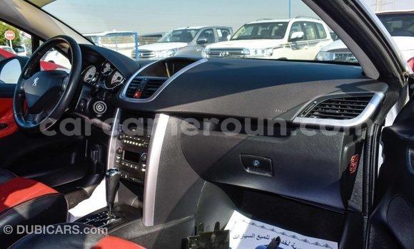 Acheter Importé Voiture Peugeot 207 Autre à Import - Dubai, Adamawa