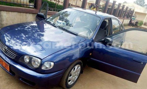 Acheter Occasion Voiture Toyota Corolla Bleu à Yaoundé, Central Cameroon