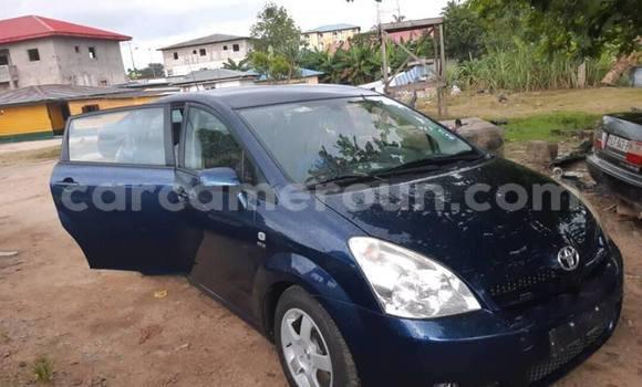 Acheter Occasion Voiture Toyota Corolla Bleu à Douala, Littoral Cameroon