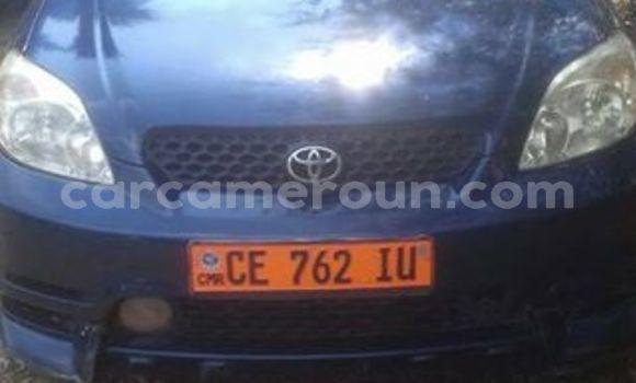 Acheter Occasion Voiture Toyota Matrix Bleu à Tibati au Adamawa