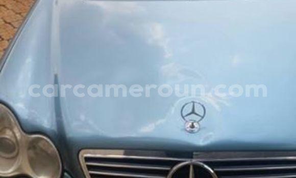 Acheter Occasion Voiture Mercedes Benz C-Class Autre à Tibati au Adamawa