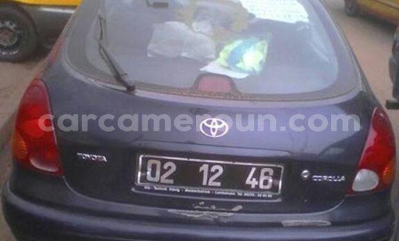 Acheter Occasion Voiture Toyota Corolla Autre à Tibati au Adamawa