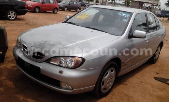 Acheter Occasion Voiture Nissan Primera Gris à Yaoundé au Central Cameroon