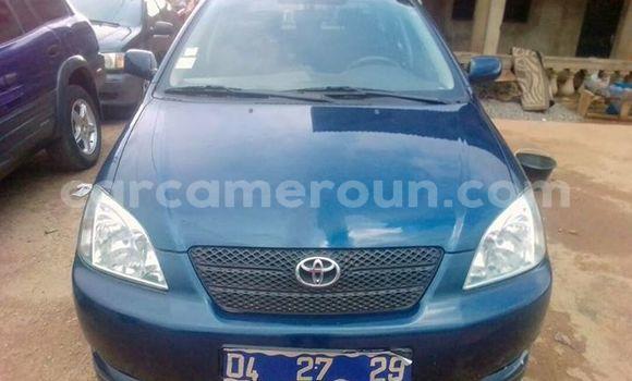 Acheter Occasion Voiture Toyota Corolla Bleu à Yaoundé au Central Cameroon