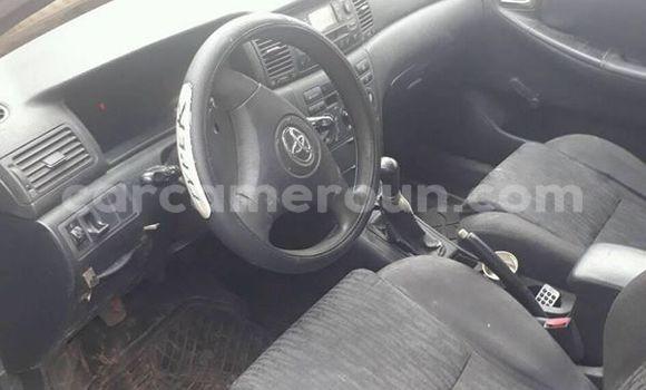 Acheter Occasion Voiture Toyota Corolla Gris à Yaoundé au Central Cameroon